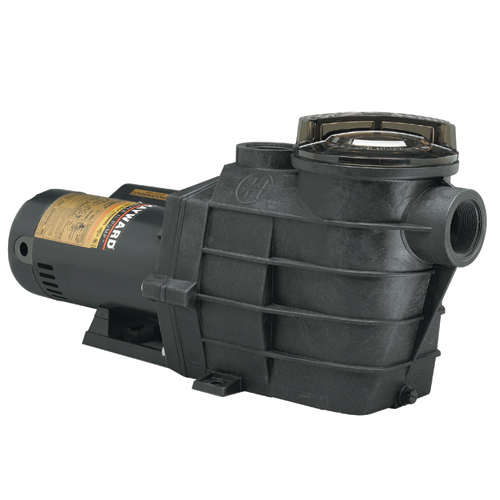 Replacement Pool Pump Motors And Seals