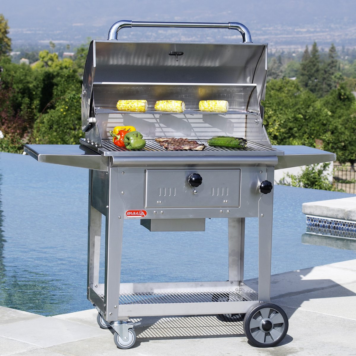 Bull Bison Charcoal Grill With Cart ...